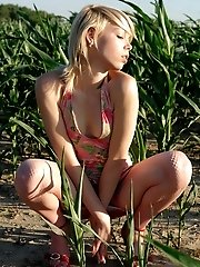Splendid Nude Babe Is Having A Walk In Cornfield Without Any Article Of Clothes At Daytime And Feels